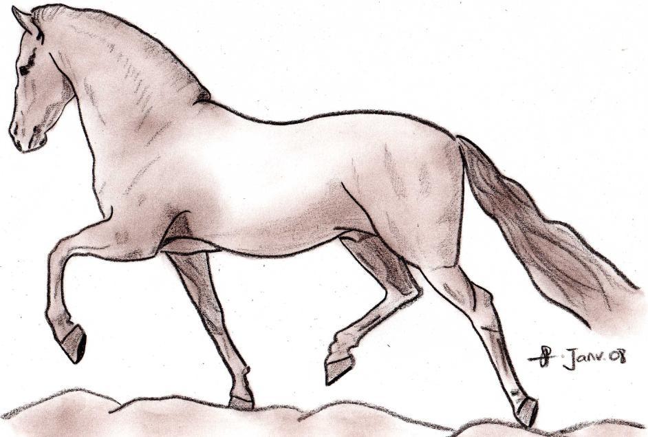 Chevaux de neige facile a dessiner - Dessiner un cheval simple ...